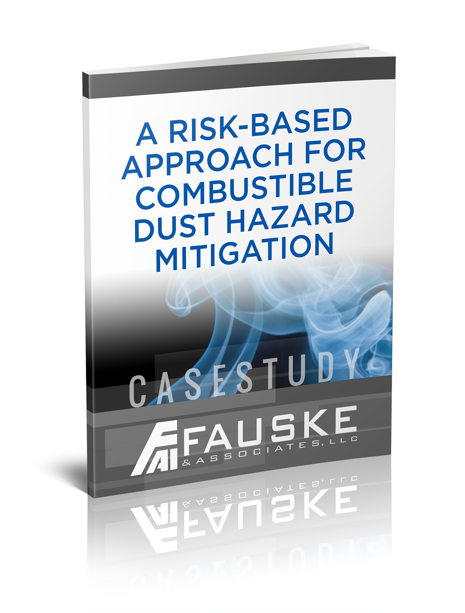 fauske-cs-risk-based-approach.png
