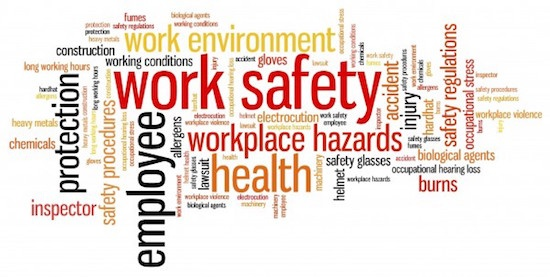 What is a Power Plant Safety Manual?